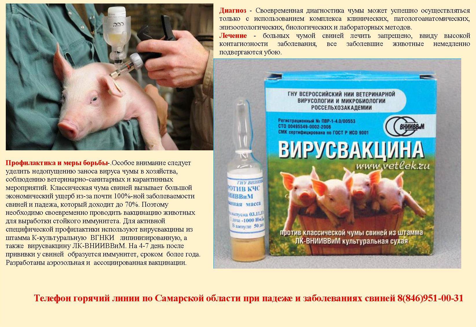 Акваприм – инструкция по применению антибиотика для птиц и животных