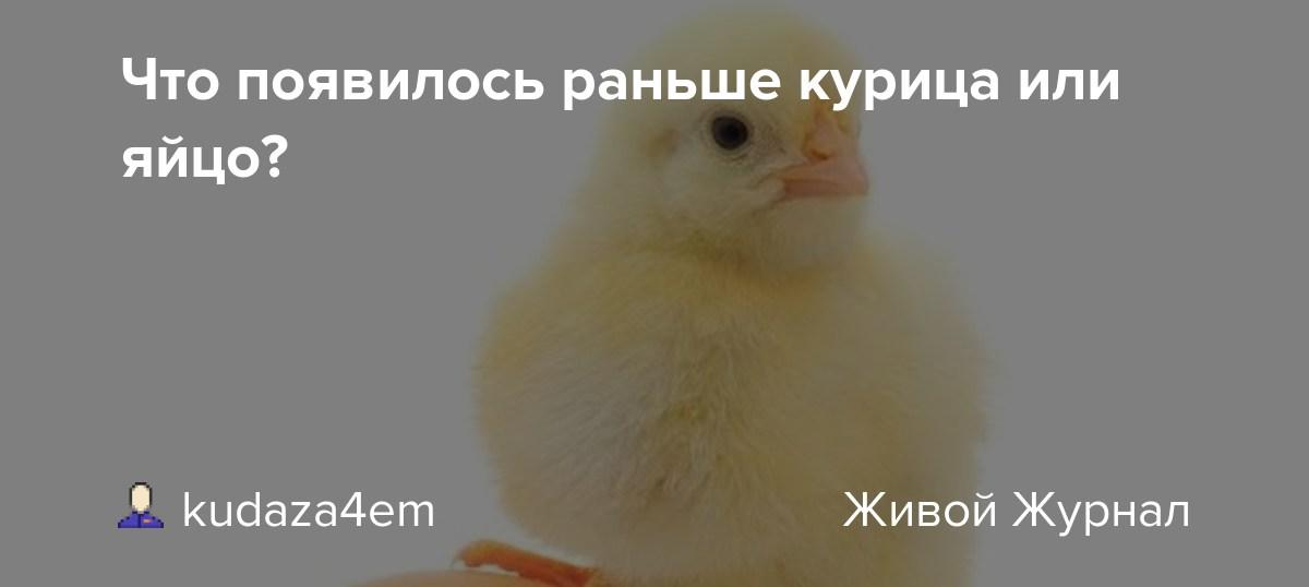 Что появилось раньше – яйцо или курица? Узнали ученые!