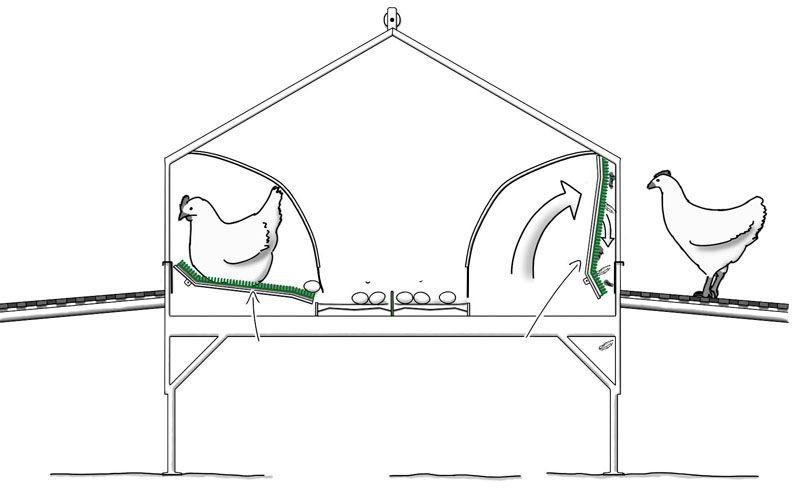 Делаем гнезда для кур несушек из подручных материалов своими руками