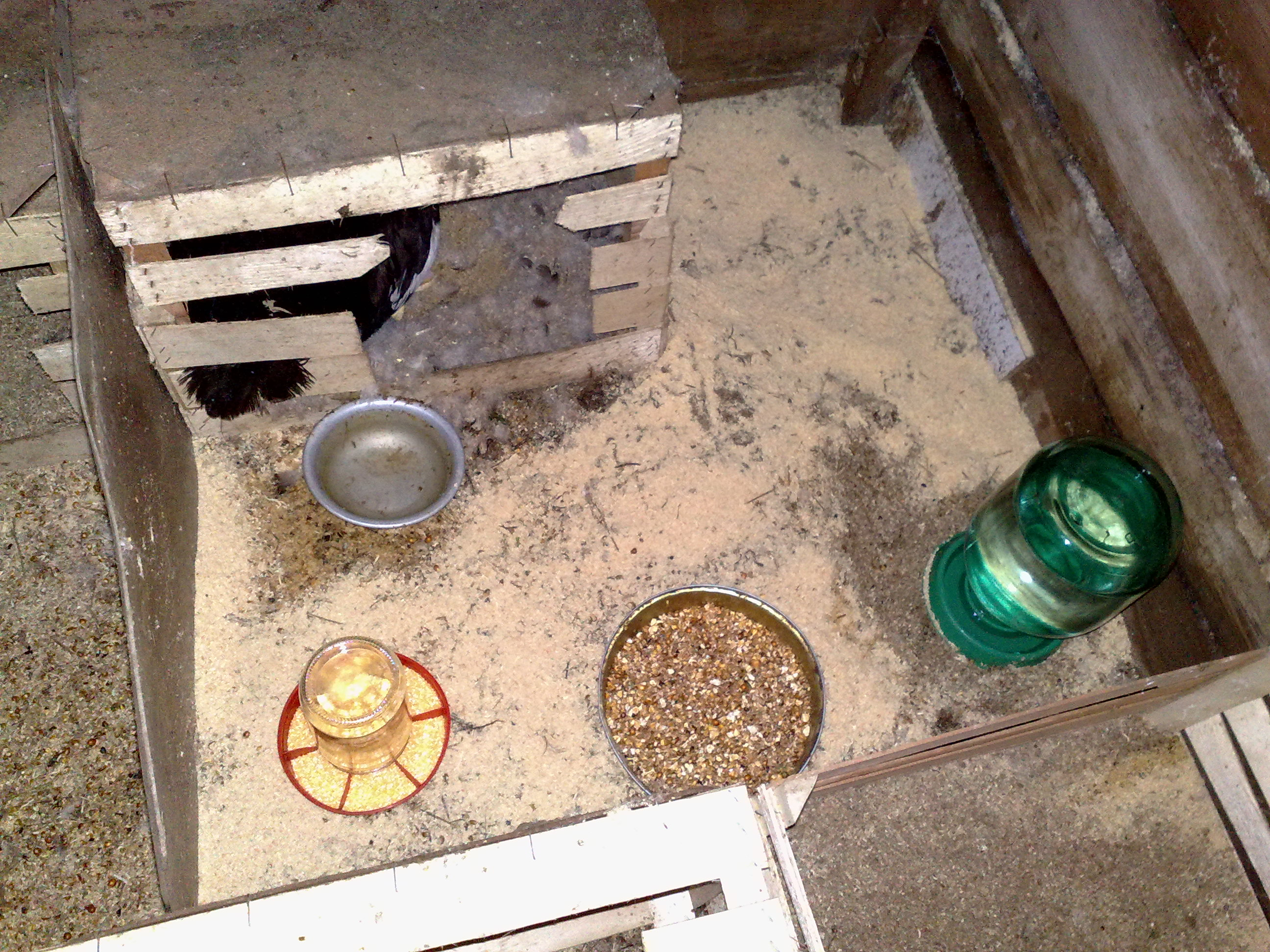 Самодельные гнезда для индоуток