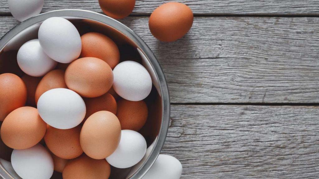 Сказ о куриных яйцах: от причин появления 2-желтковых яйцеклеток до определения свежести