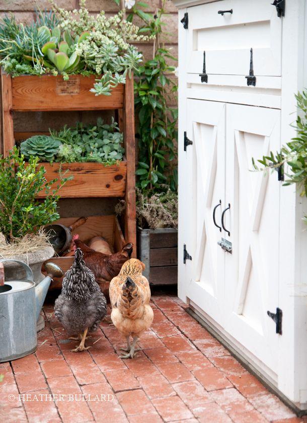 Красивые курятники на лето для украшения двора