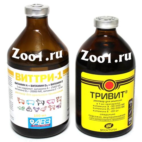 Тривит для цыплят и молодок — как применять тривитамин?