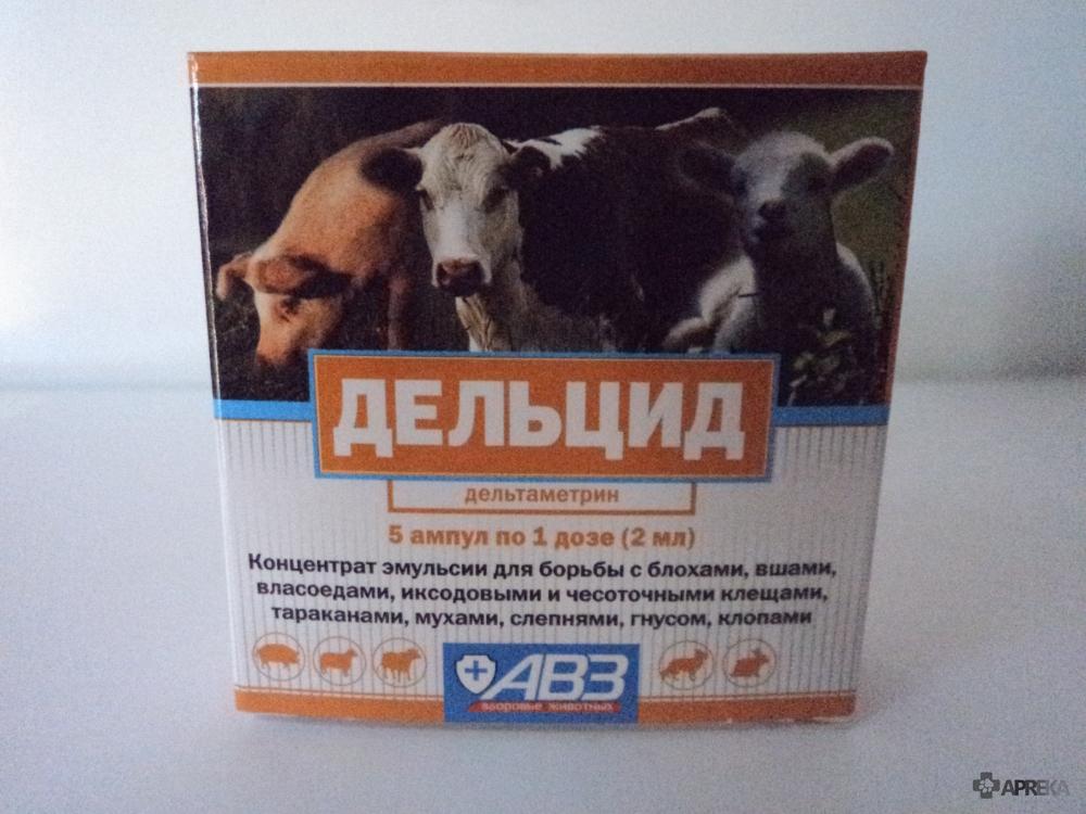 Бутокс 50: инструкция по применению для кур, цыплят и бройлеров