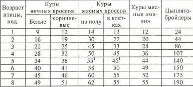Средний вес курицы несушки: причины его снижения, правила кормления и содержания, стимуляция кладки