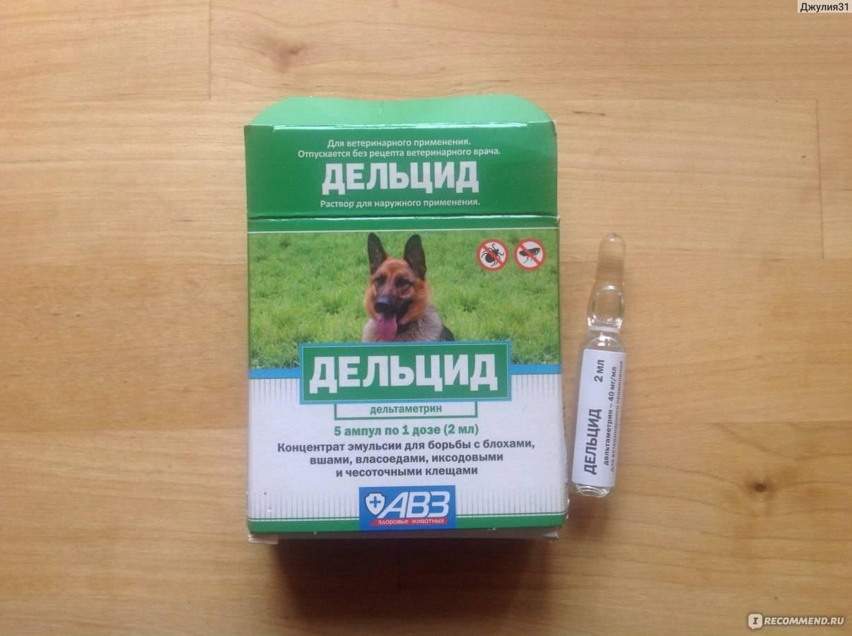 Экофлис — инструкция по применению, дозировки для птиц и животных