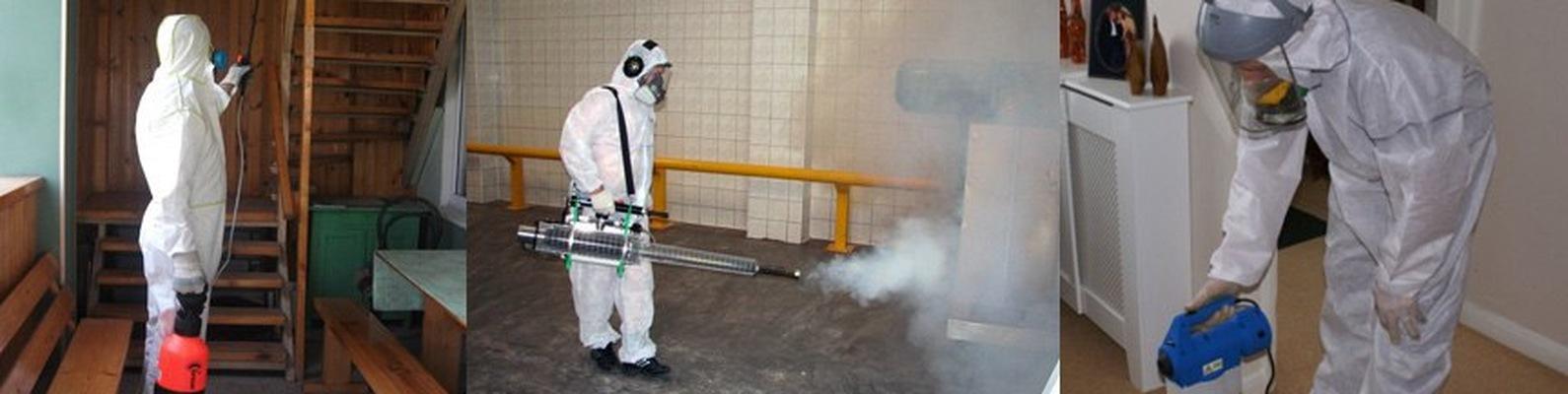Дезинфекция курятника в домашних условиях: чем обработать помещение от клещей и других паразитов?