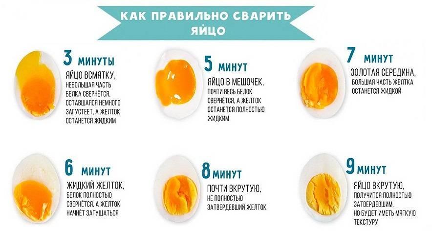 Правила приема желтка для похудения
