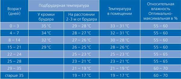 При какой температуре следует содержать индюшат