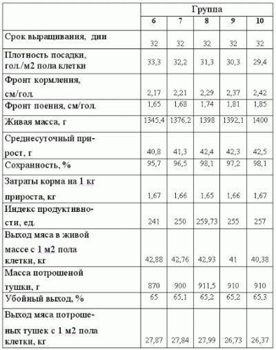 Плотность посадки бройлеров при напольном содержании: норма площади