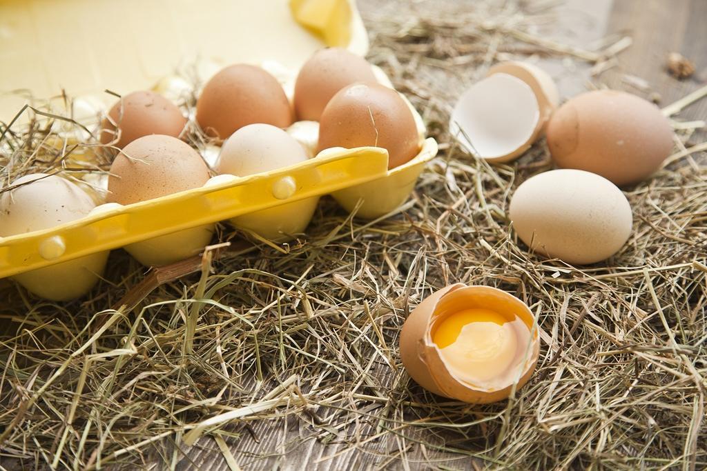 Яйца с двумя желтками – это нормально!