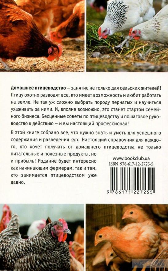Куры Венгерский великан: уникальная порода с мировой известностью