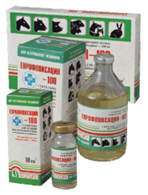 Энрофлоксацин 100 (10%): инструкция по применению в ветеринарии для птиц и животных