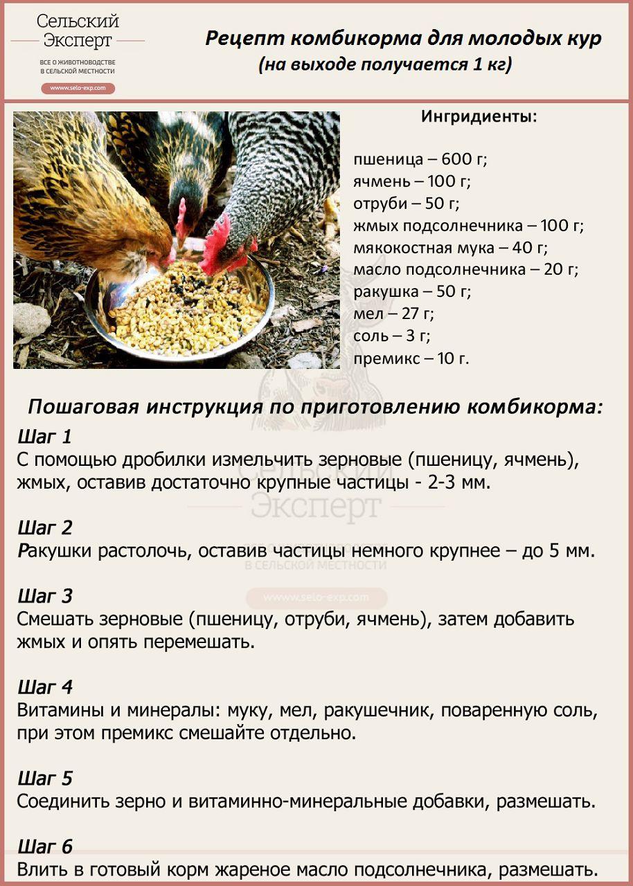 Сколько яиц несет индейка?