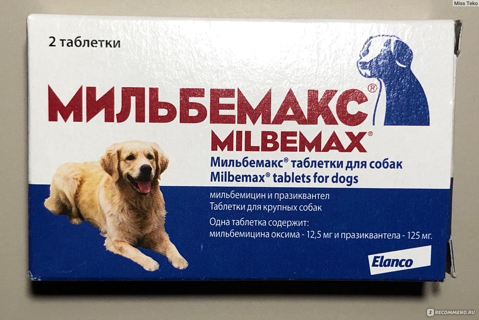 Албендазол 10% гранулянт — инструкция по применению антигельминтика для животных и птиц
