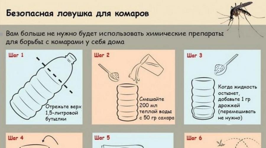 Мухи в курятнике и как избавиться без химии