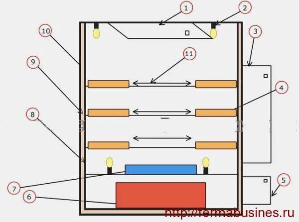 Как соорудить инкубатор для перепелов своими руками