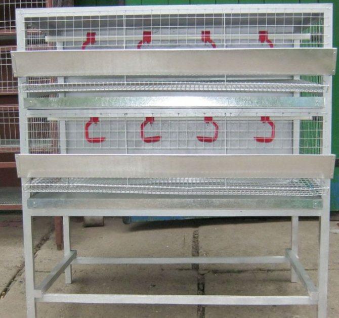 Домашние клетки для перепелов