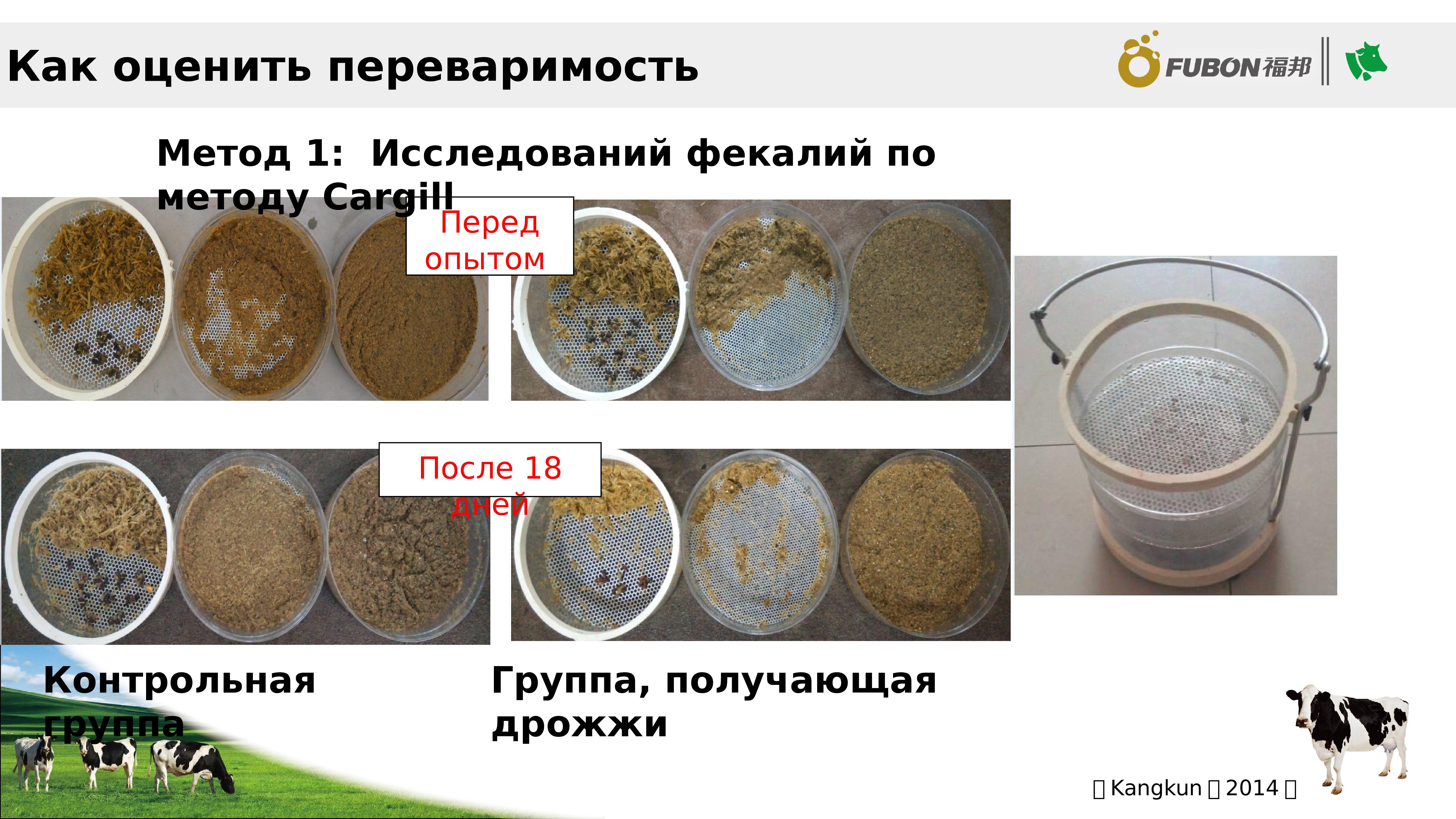 Влияние кормовой добавки СафМаннан на здоровье домашней птицы
