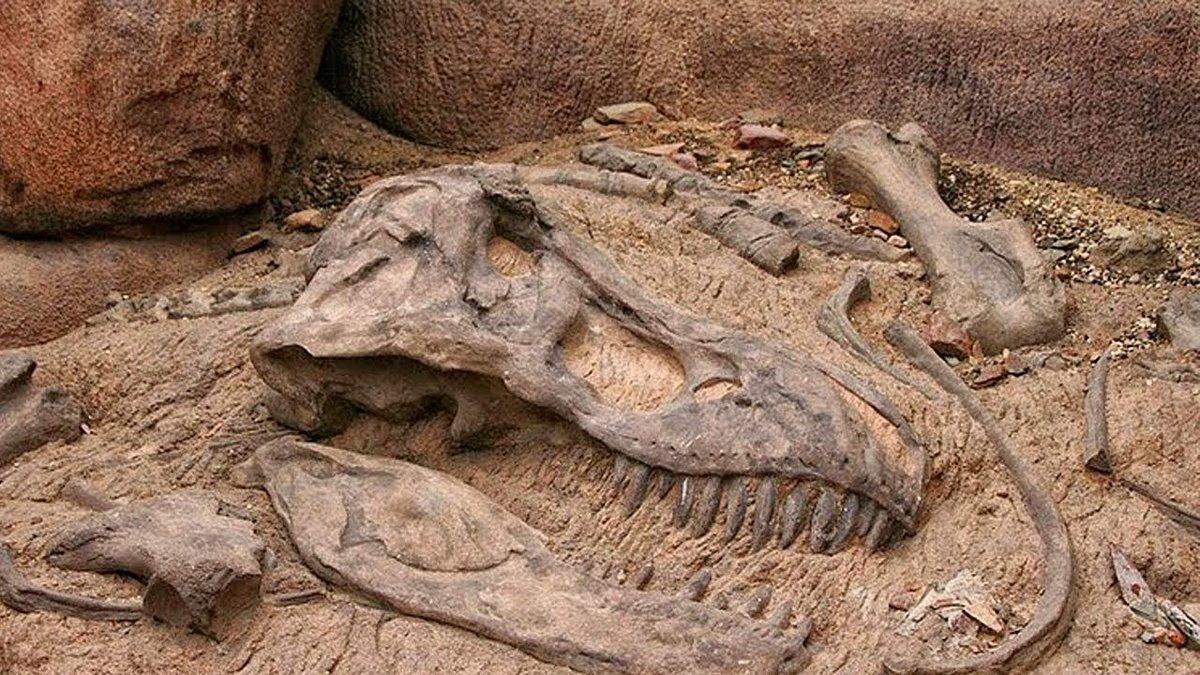 Обнаружены останки динозавра, который внешне был похож на утку