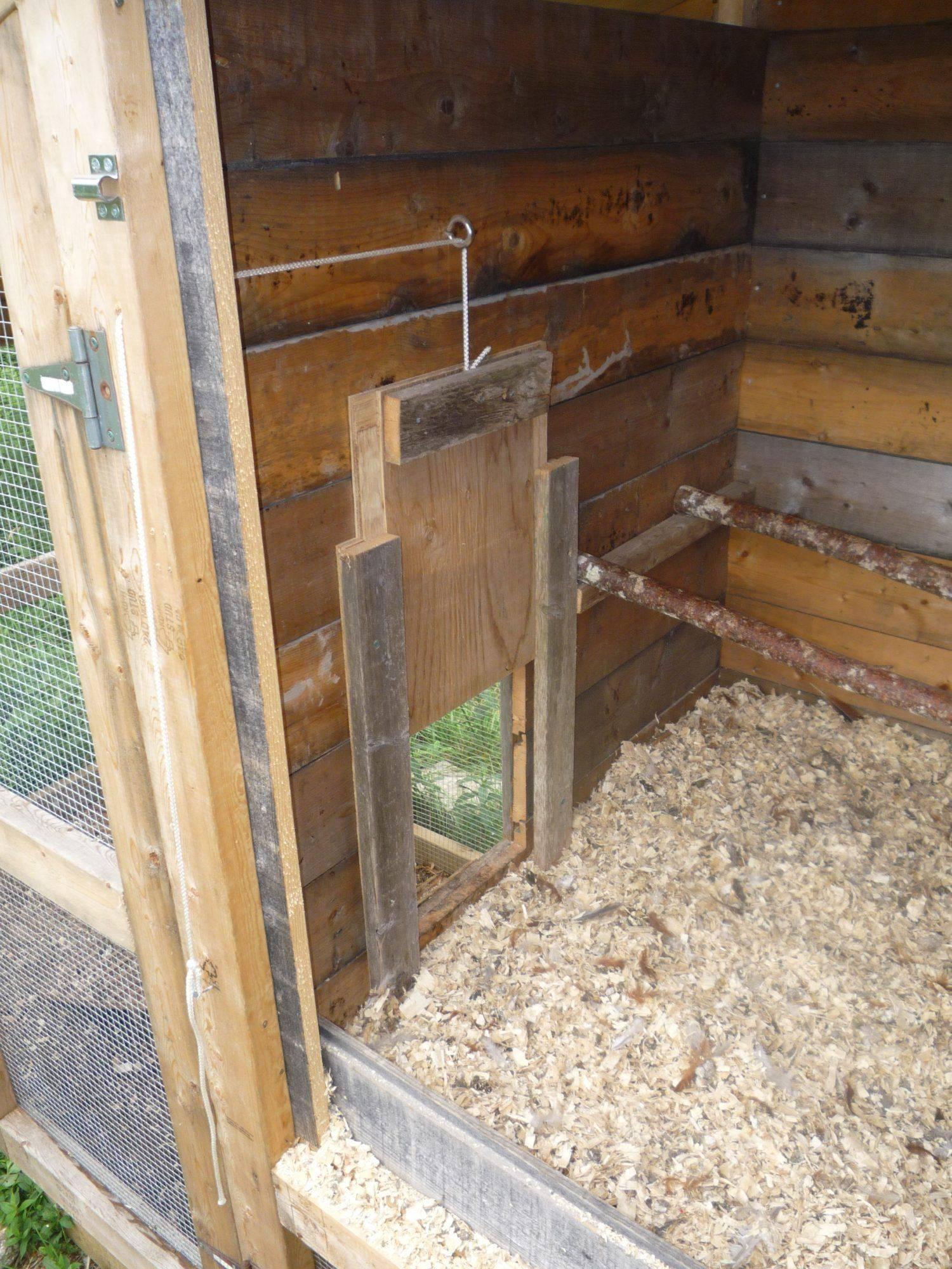 Способ постройки сарайчика для кур своими руками