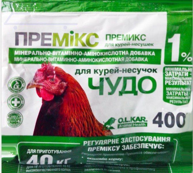 Можно ли давать крапиву курам, цыплятам и бройлерам?
