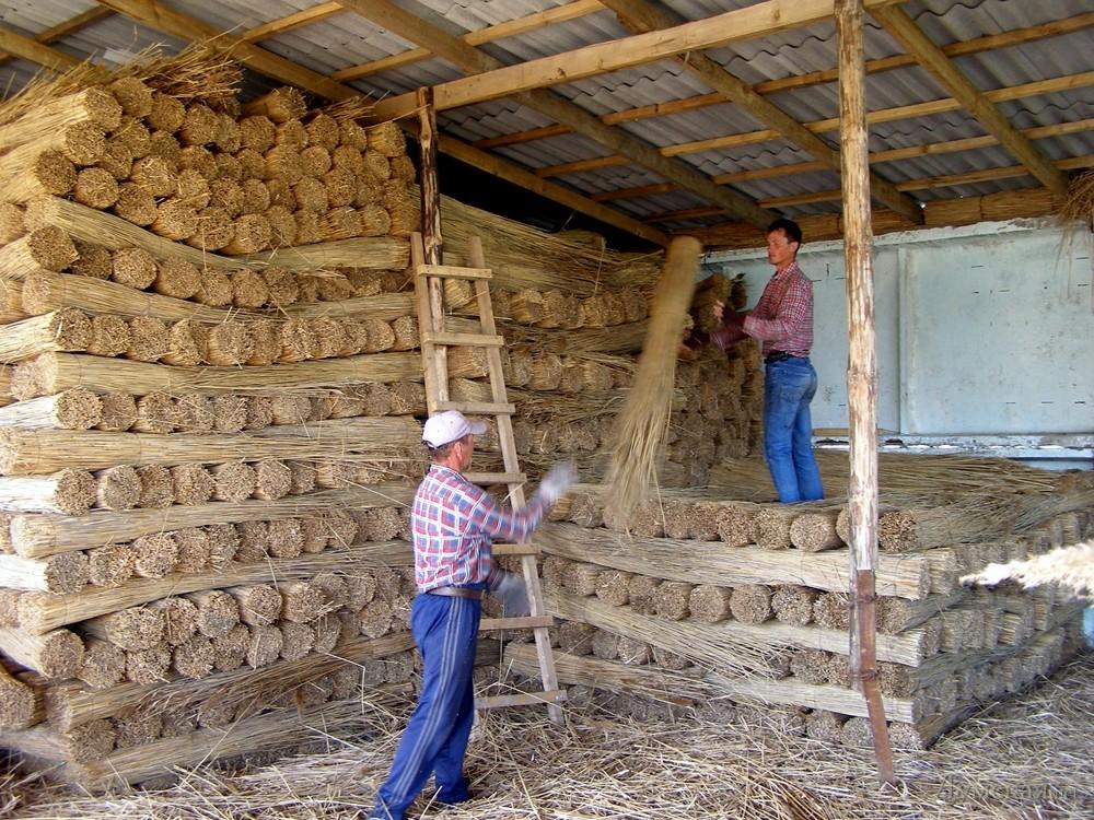 Бизнес в селе или на чем можно заработать в деревне