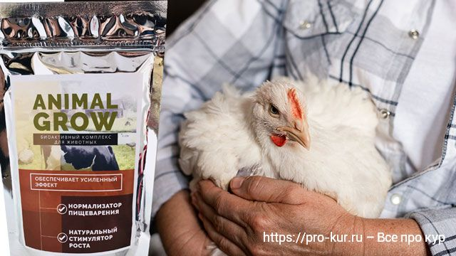 Стимулятор роста Animal Grow для кур