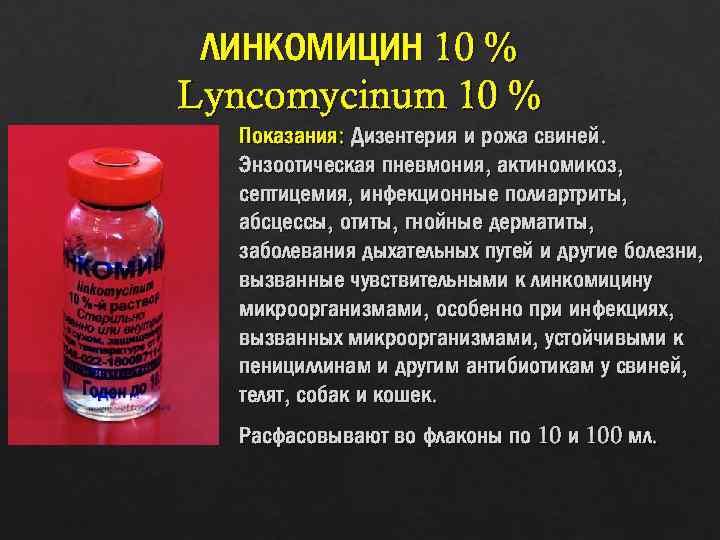 Родотиум 45% — инструкция по применению в ветеринарии, возможные противопоказания