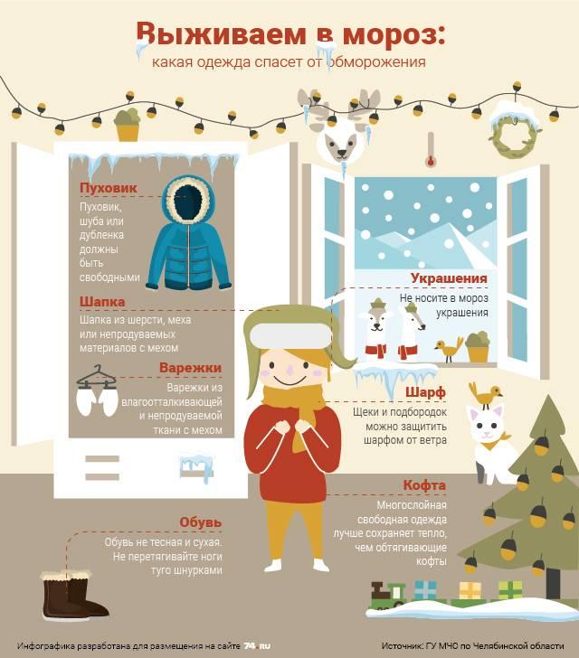 5 советов, как помочь курам пережить зиму