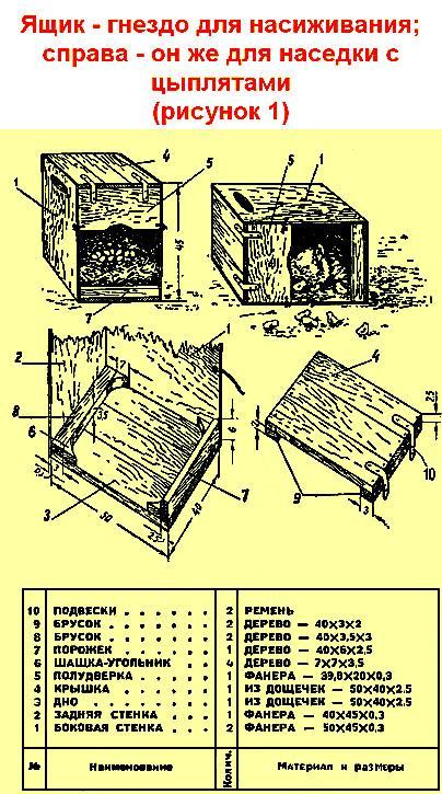 Как сделать гнезда для кур-несушек своими руками