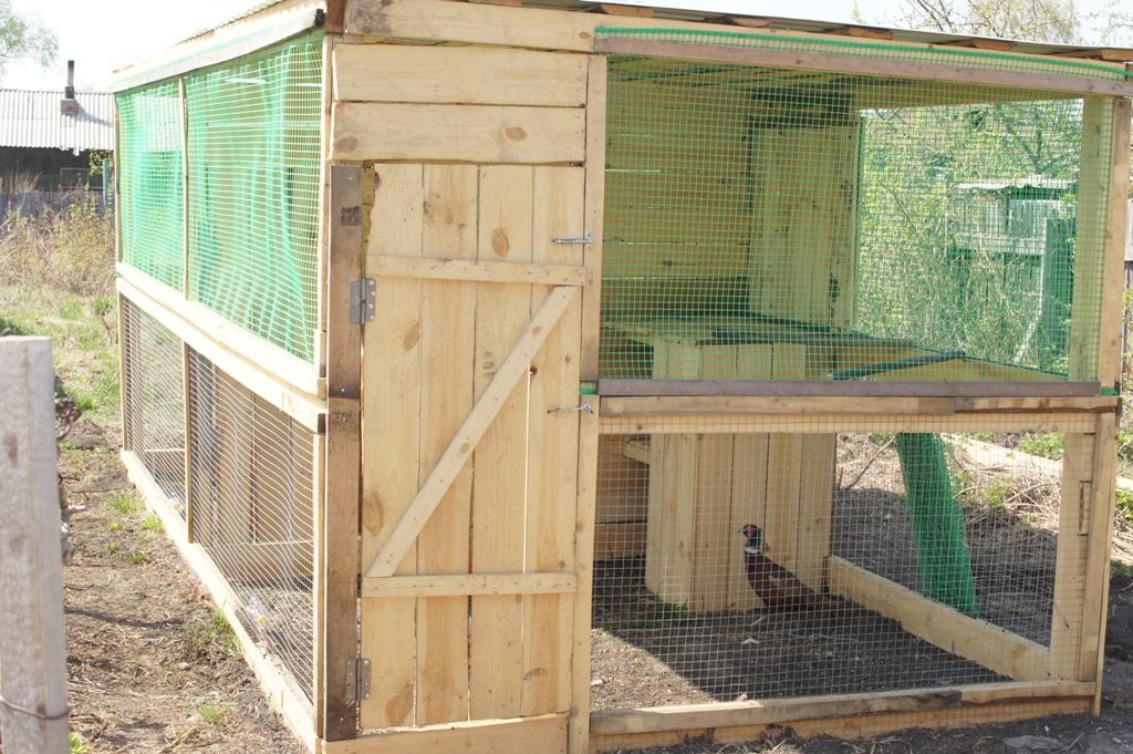 Строительство вольера для содержания фазанов