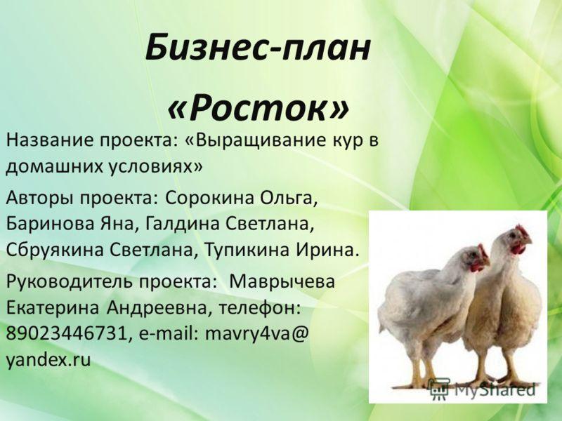 Бизнес план на разведение куриц и цыплят