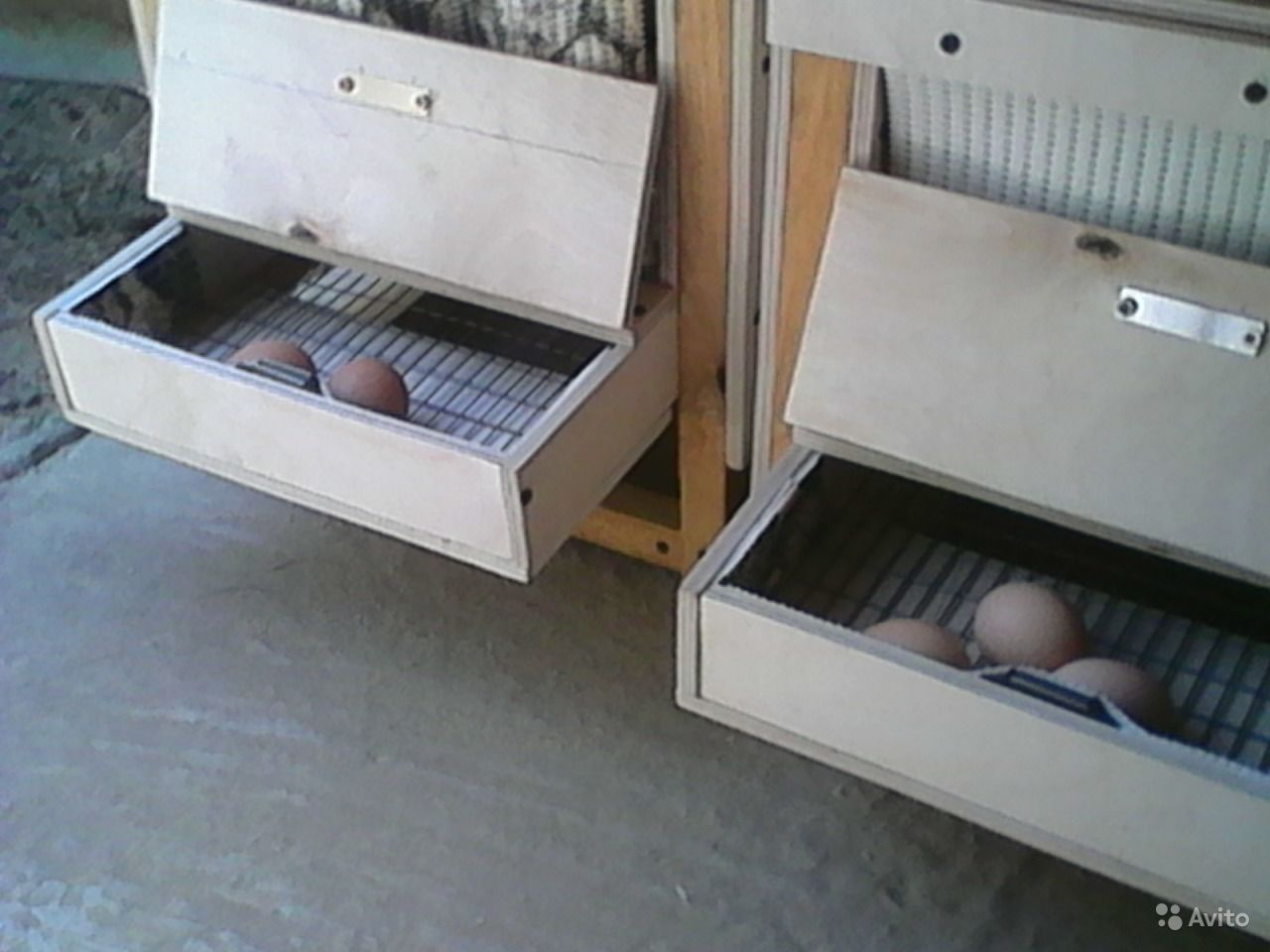 Гнезда с яйцесборником для кур несушек своими руками