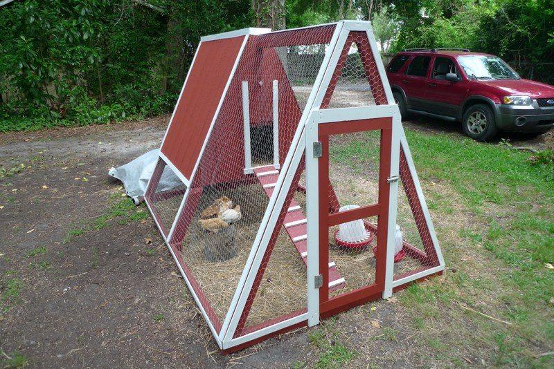 Курятник 4, треугольник или треугольный?