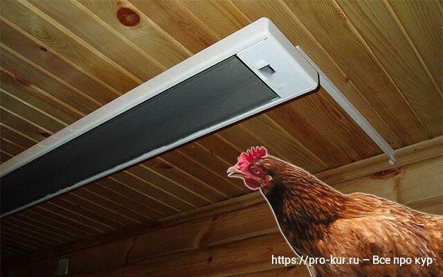 Освещение в курятнике для зимнего периода времени и для обогрева цыплят, таймер, система «Рассвет-Закат»