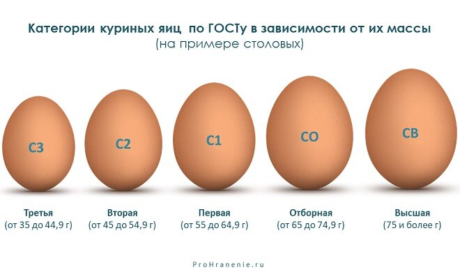 Почему в яйце бываю два желтка и нужно ли решать такую проблему?