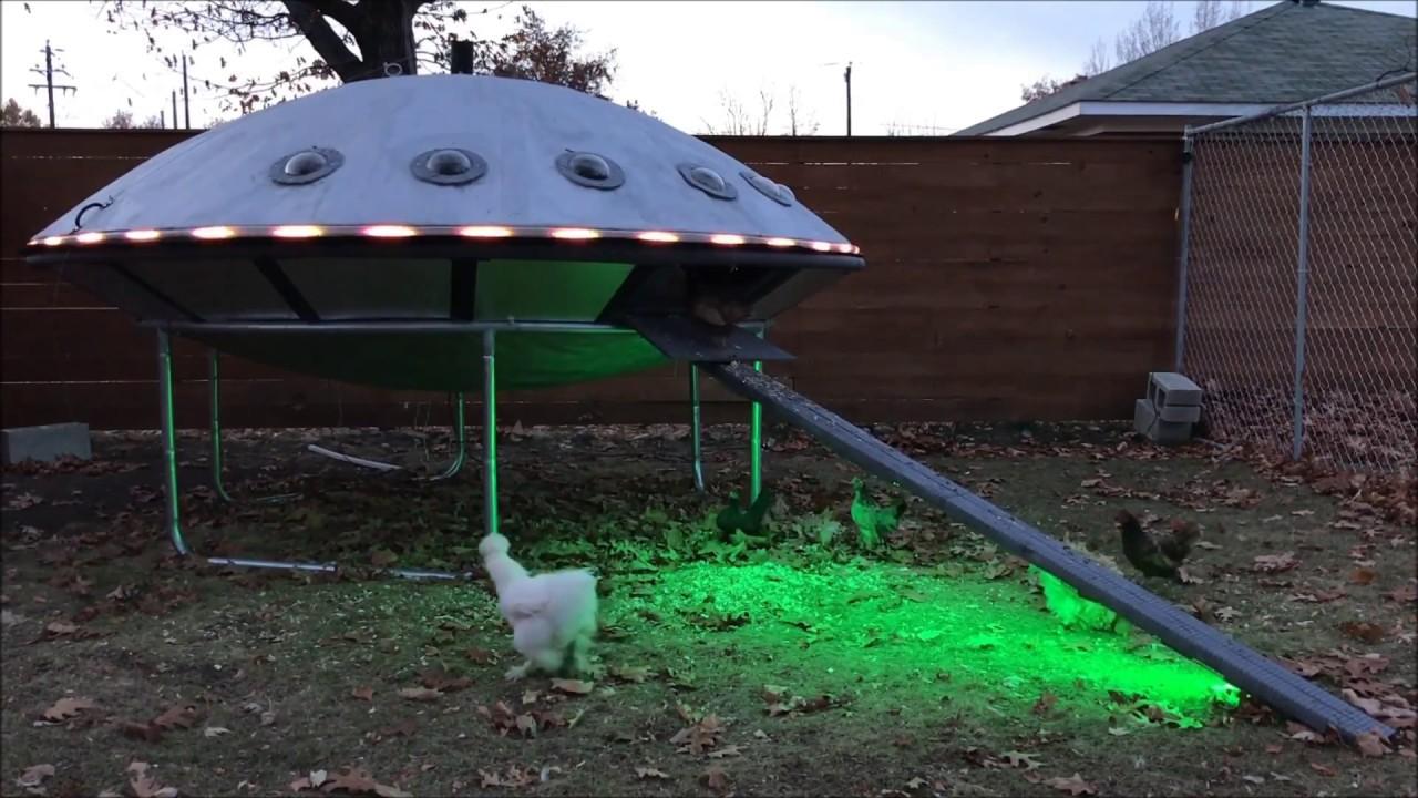 Курятник НЛО — пошаговое строительство с фото и видео