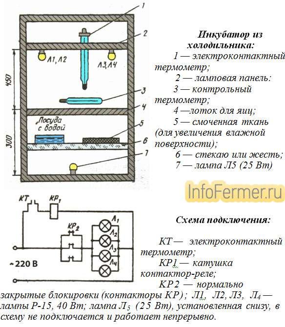 Инкубаторы для дома и фермерского хозяйства