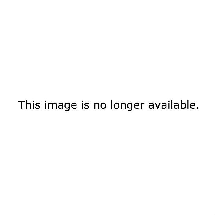 Куры Род Айленд – описание с фото, содержание и уход