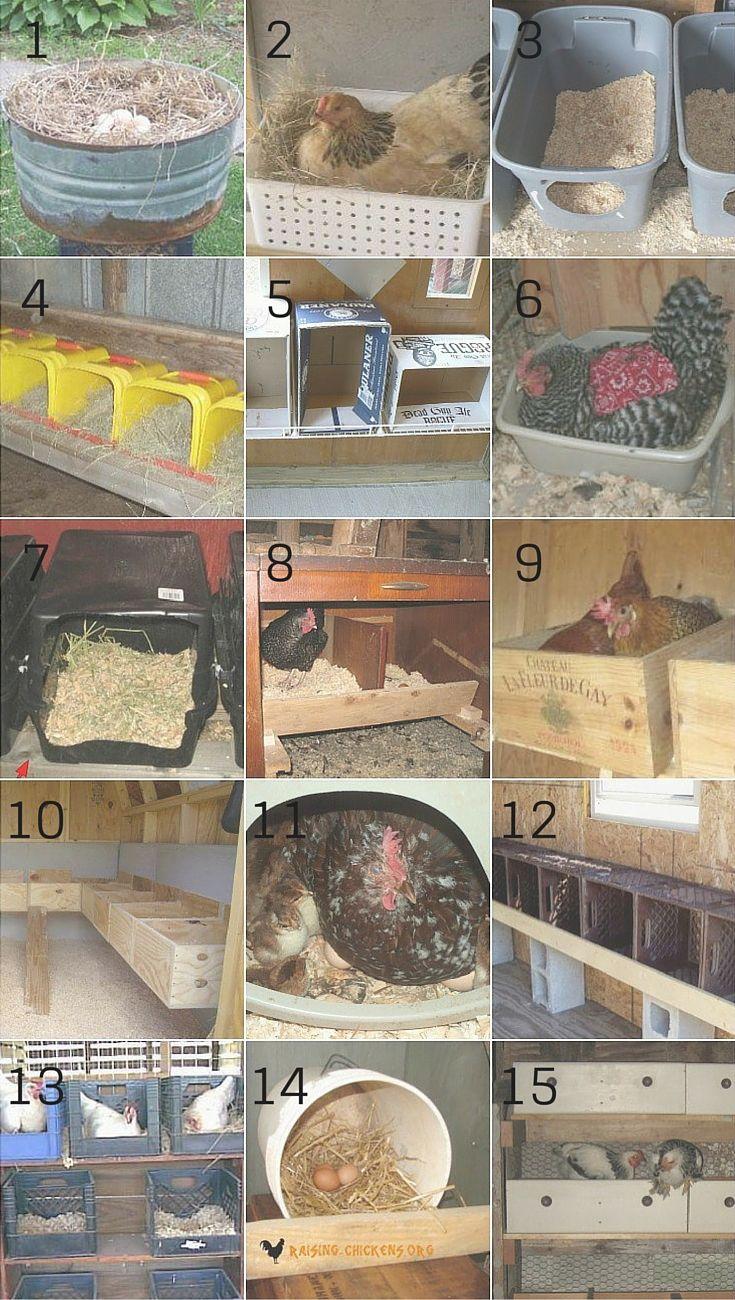 7 причин повесить занавески на гнезда для кур