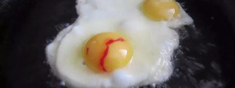 Кровь и сгустки в курином яйце: почему и можно ли его есть? Причины, меры профилактики