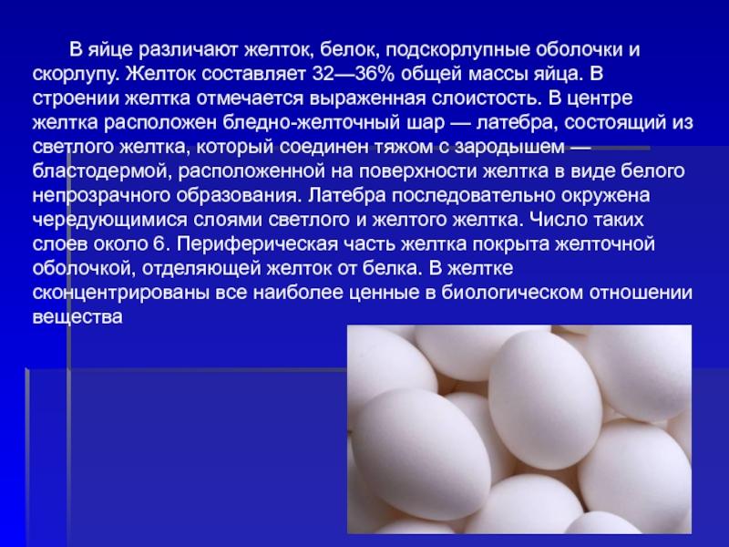 Как курица несет яйца и сколько времени занимает процесс? Механизм формирования желтка, белка и скорлупы