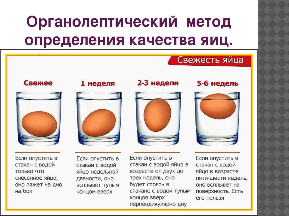 Как проверить свежесть куриного яйца в домашних условиях с помощью воды и других способов?