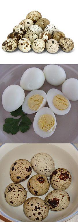 Сколько варить яйца перепелки – для получения всмятку, вкрутую