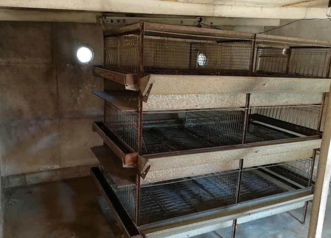 Оборудование для содержания кур несушек