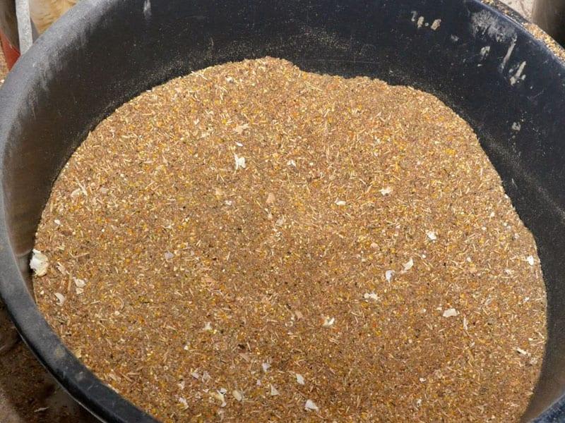 10 причин ферментировать корм, дрожжевание корма