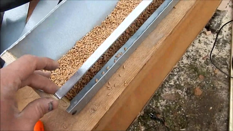 Бункерная кормушка для перепелов на даче