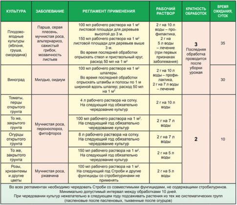Профилактика заболеваний у кур: чем пропаивать несушек? Растворы, применяемые в птицеводстве