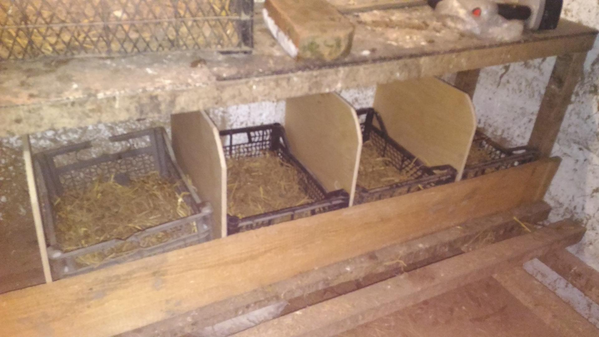 Делаем гнезда для кур несушек своими руками